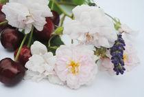 Kirschen und Blüten von hannahw