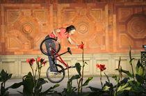 Oh ein hübsches Blümchen - lustiges BMX Flatland Bild by Matthias Hauser