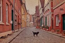 Straße mit Hund by pahit