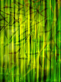 Bamboo Spirit by Lutz Baar