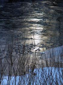 Gewässer, fießend von Carmen Steinschnack