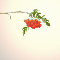 Background with rowan branch by yaviki