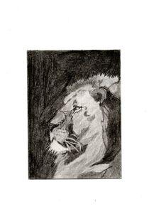 Stoic Lion von Melissa Nowacki