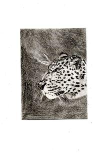 Vigilant Leopard von Melissa Nowacki