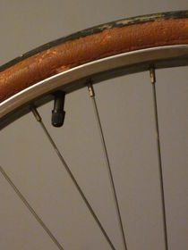 Do Bicycle Tires Have Lips? by Guy  Ricketts