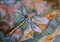 dragonfly by Derek McCrea