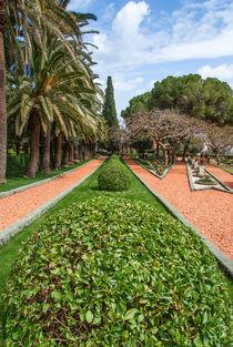 fragment of famous Bahai gardens in Haifa, Israel von Serhii Zhukovskyi