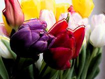 Tulips von Leandro Bistolfi