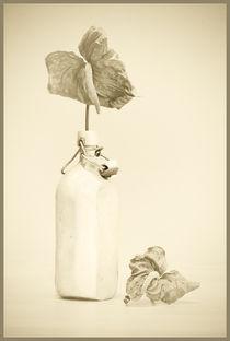 Alte Flasche von Fernand Reiter