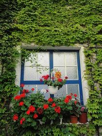 Fenster nach Griechenland von Lucia Benzova