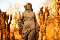 Engel des Lichts von fraenks