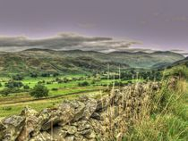 Lake District von Allan Briggs