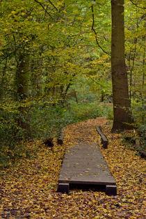 Autumn Is Here von Ben Doyle