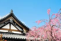Kyoto von Tom Werner
