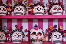 Mexican Skulls by John Mitchell