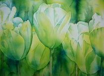 'Weiße Tulpen' von Thomas Habermann