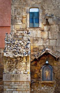 Pigeon Loft by JACINTO TEE