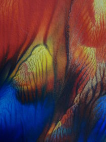 Farbenspiel  von regenbogenfloh