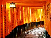 Fushimi Inari von patricklange