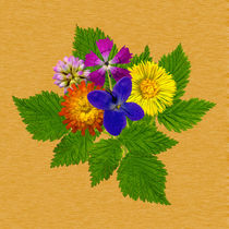 Blumenstrauss mit bunten Blumen auf braunem Hintergrund by Manfred Koch