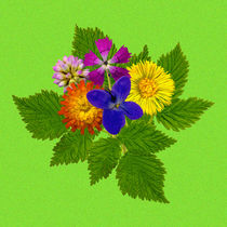 Blumenstrauß mit bunten Blumen auf grünem Hintergrund von Manfred Koch
