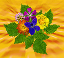Blumenstrauss mit bunten Blumen auf orangenem Hintergrund von Manfred Koch