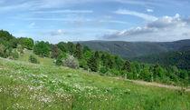 Fruehlingmittelgebirge25mb