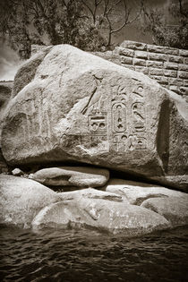 Egyptian Hieroglyphs by David Tinsley