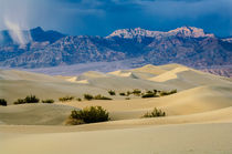 Death Valley Storm by Barbara Magnuson & Larry Kimball