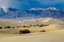 Scca-0058-sand-dunes