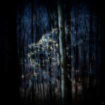 Late Fall In The Forest von Chris Lord