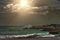 Summer-serenity2