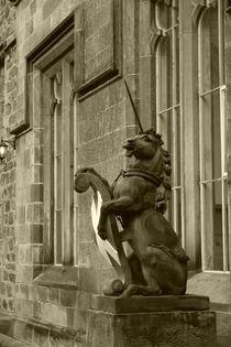 Unicorn with Shield by alina8