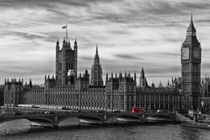 Houses of Parliament by David Pringle