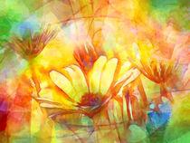 Frühlingsgruss von Lutz Baar