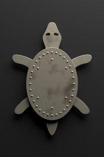 Schildkröte von dresdner