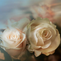 Romantik Rose von ateliersite