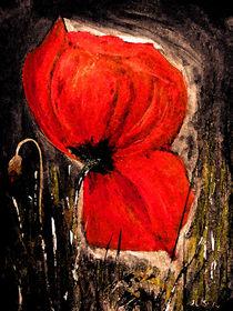 Rote Mohnblume von Irina Usova