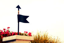 A decorative garden wind sign. by Gordan Bakovic
