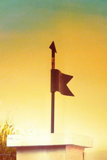 A decorative garden wind sign. von Gordan Bakovic