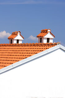 Two chimneys on the roof. by Gordan Bakovic