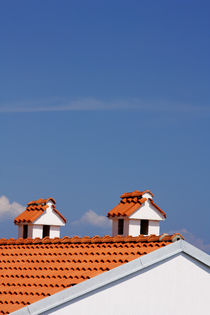 Two chimneys on the roof. von Gordan Bakovic