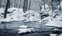 Frozen Stream by Henrik Herr