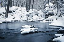 Winter Stream von Henrik Herr