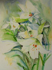 Lilium von Maria Földy