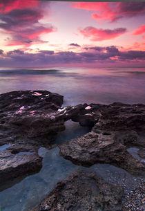 Buybuyphoto.com 008 by buybuyphoto