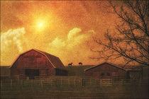The-farm2