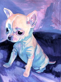 CHIHUAHUA BABY by caitface121