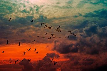 Wolkenflug
