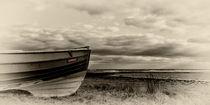 Kindred by David Pringle